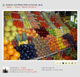 Food | Traditional Islamic School